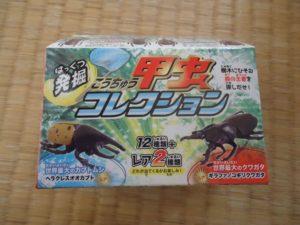 発掘!甲虫コレクション (2)